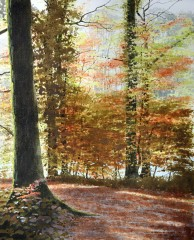63 - Autumn trees beside the river, in Garrie's Wood