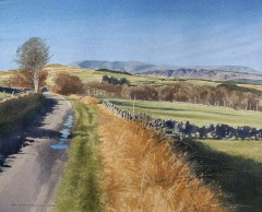 36 - Cairnsmore and Clints of Dromore from near Upper Rusko